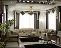 Elegant Living & Reception