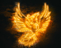 A New Year Arises for Grimbergen