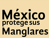 Infografía - México Protege sus Manglares