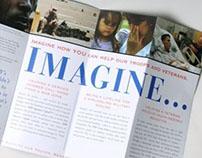 VFW Brochure