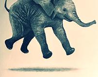 Jumping Elephant Illo