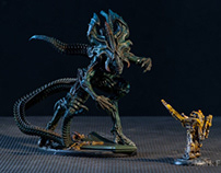 Painting AVP Prodos Games AVP The Hunt Begins