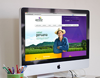 Agronor Graphic and Web design