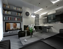 Small Apartment's Renovation
