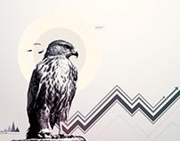 Falcon Charts Concept