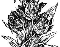 Grabado · Tulipanes