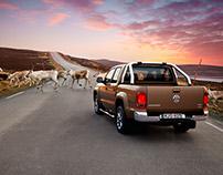 Volkswagen mountain reindeers