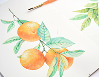 Orange tree - watercolor pattern