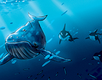 Blue Whale Storyboards