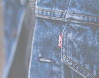 Levi's 6-Month Buying Plan