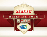 CES Manual for SanDisk