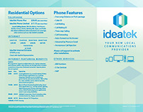 IdeaTek Services Brochure 2014