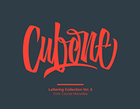Lettering & Calligraphy 2015 / Collection Nº 5