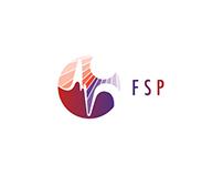 FSP - Fast Solar Polarimeter