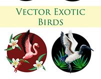 Vector tropical birds set
