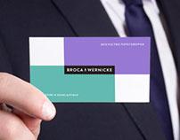 Broca & Wernicke
