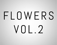 Pro-Room Flowers Vol.2