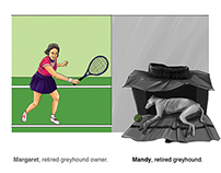 Charity Adverts : Greyhound Racing