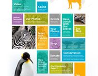 Calgary Zoo CONCEPT Web Design