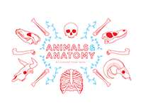 Animals & Anatomy - An Animated Poster Series
