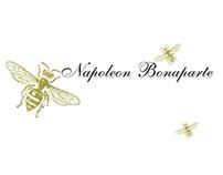 Napoleon Series