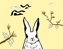 Rabbit and Pine Cone