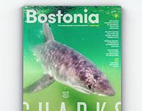 Bostonia Summer 2019