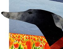 forward collage