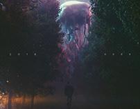Music cover - revelation