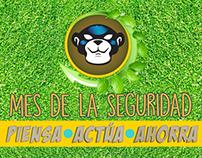 Campaña de Seguridad 2016