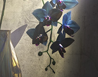 3D - Realistic Blue and Red Orchid dramatic scene