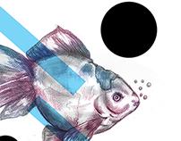 FISH by Mateusz Suda