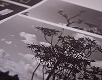 Muestra / Analog Photography