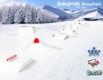 SNOW PARK PROJECT
