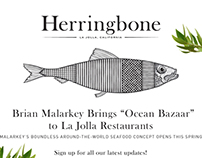 Herringbone Website
