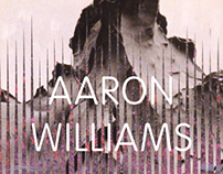 Aaron Williams book
