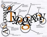 The Anatomy of Typography