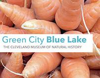 GreenCityBlueLake - Sustainable Social Media Campaign