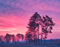 Grainy dawn