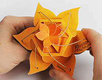 Blossom Tea Packaging