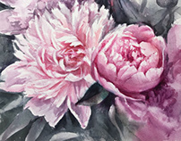 Watercolor peonies sketch