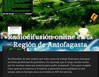Reportaje sobre radiodifusión online