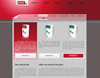 Notion Web Design