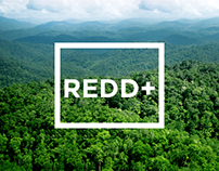 REDD+ Forests Indonesia