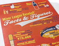 Minor League Baseball Infographic
