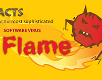 Infographic on software virus FLAME