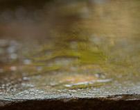 agua ~ l'eau vive ~