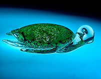 Glass Photography: Sea Turtle