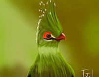 Bird - Digital Painting