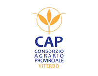 "Proposal: ""Consorzio Agrario Viterbo"" Corporate Image"